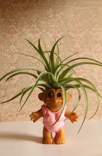 Troll with air plant hair