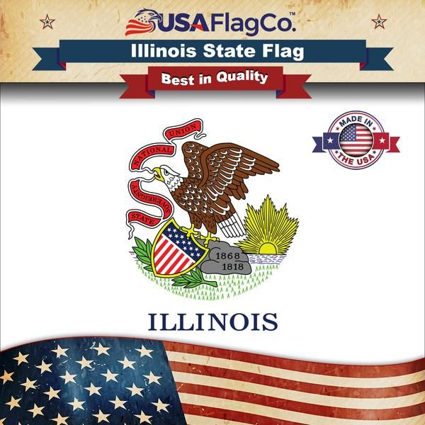 Illinois Flag In 2020 Flag States Capitals Illinois