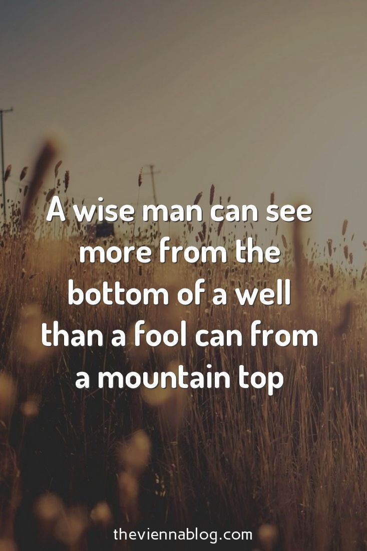 A wise man can see more from the bottom of a well than a fool can from a mountain top. #gentleman #sophistication #success