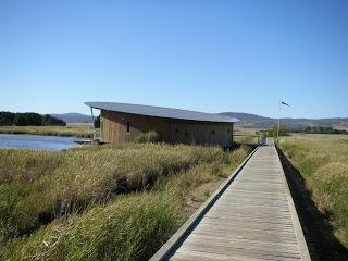 Tamar Island Wetlands, Launceston, Australia.