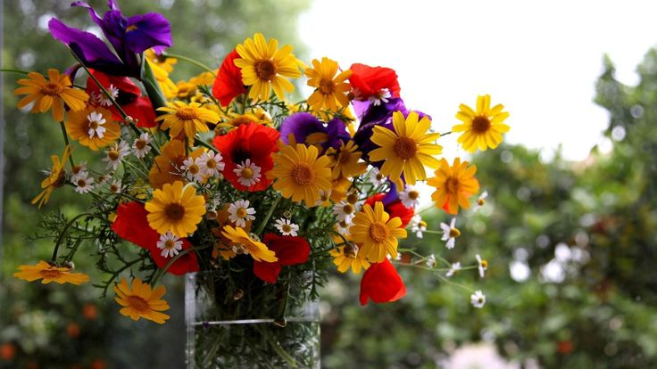 #SendFlowersToGurgaon Send Flowers To Gurgaon by buy flower at lowest price online florist in gurgaon, florist in gurgaon, same day flowers delivery gurgaon, midnigh services also available.