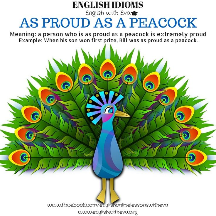 English Vocabulary, English Language, English Idioms, As proud as a peacock, English with Eva