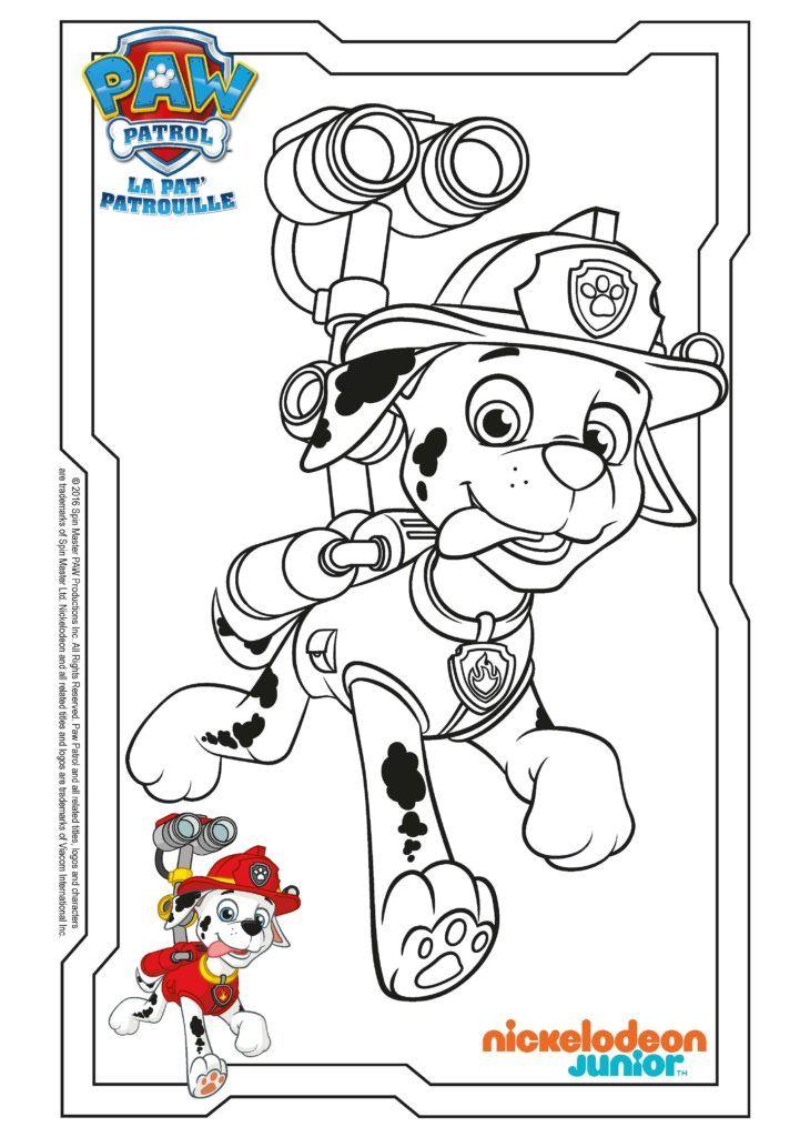 Paw Patrol Ausmalbilder - Dalmatiner Marshall Paw patrol