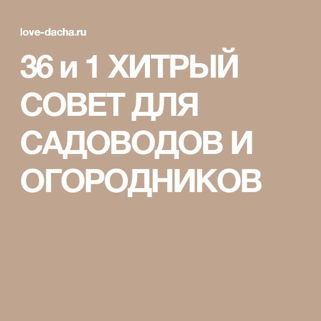 36 и 1 ХИТРЫЙ СОВЕТ ДЛЯ САДОВОДОВ И ОГОРОДНИКОВ