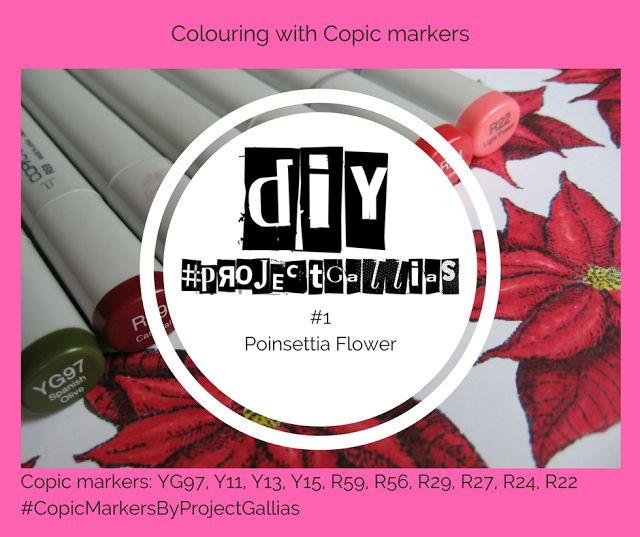 ProjectGallias :  Copic Tutorial - How to color and shade a Poinsettia flower using Copic markers -  Jak pokolorować i pocieniować kwiat Poinsecji (Gwiazdy betlejemskiej) z użyciem markerów Copic. #projectgallias, #copicmarkersbyprojectgallias, tutorial, DIY, copic markers, kolorowanie, coloring, copic DIY, howto, Poinsettia, Poinsecja, gwiazda betlejemska,