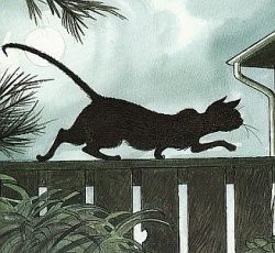 SLINKY MALINKI was blacker than black / A stalking and lurking adventurous cat / He had bright yellow eyes and a warbling wail / And a kink at the end of his very long tail  / By Lynley Dodd