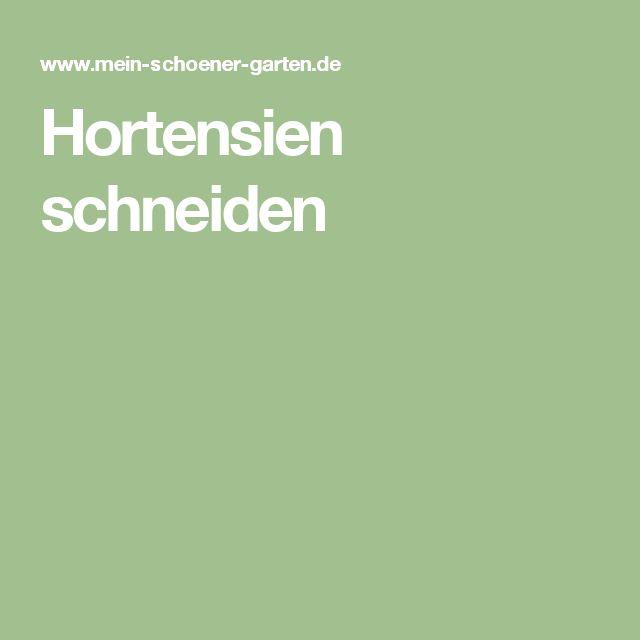 Hortensien schneiden                                                                                                                                                      Mehr