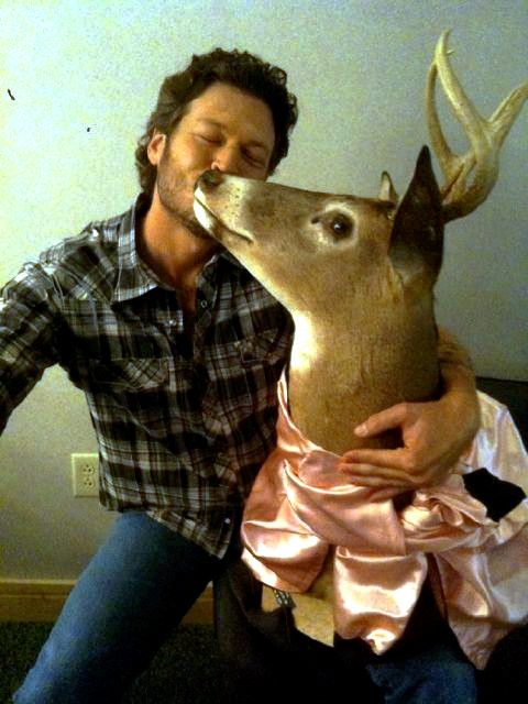 Awwwwww Blake and Bambi! I wouldn't mind being a deer right about now. Yes I know a body less deer.