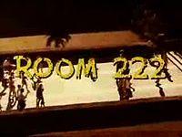 Lloyd Haynes - Mr. Pete Dixon  Denise Nicholas - Miss Liz McIntyre  Michael Constantine - Mr. Seymour Kaufman  Karen Valentine - Miss Alice Johnson  ROOM 222 !!!!!!