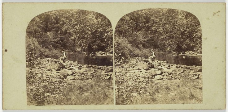 View in the Devil's Glen, County Wicklow, Ireland, Anonymous, 1850 - 1880