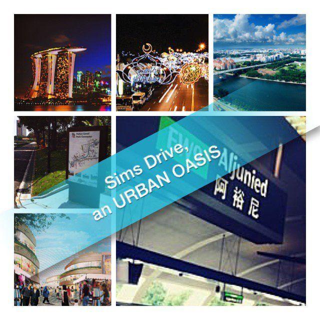 New Launch Condo - Sims Drive - Urban Oasis