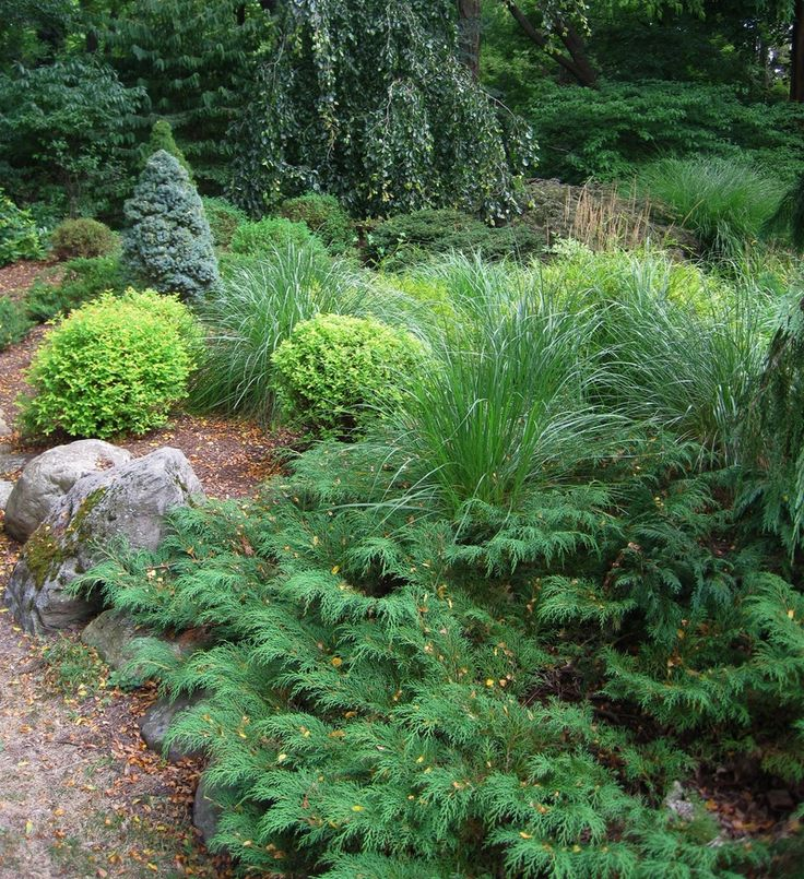 17 best images about our planters on pinterest nancy for Partial shade garden designs