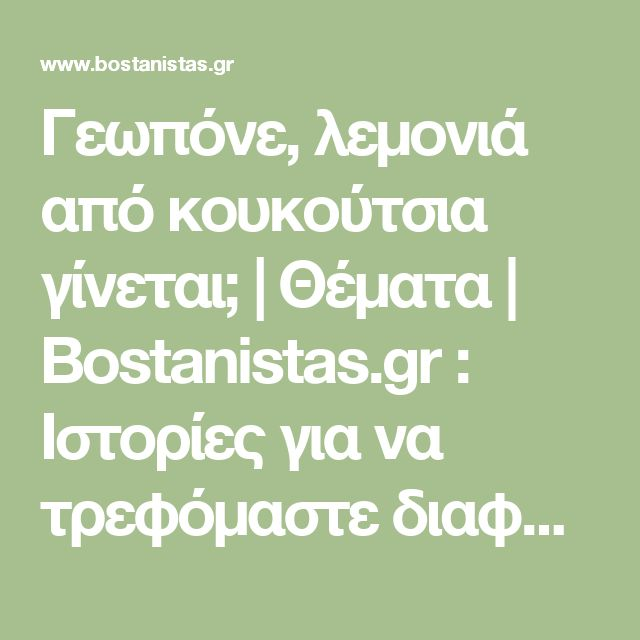 Γεωπόνε, λεμονιά από κουκούτσια γίνεται; | Θέματα | Bostanistas.gr : Ιστορίες για να τρεφόμαστε διαφορετικά