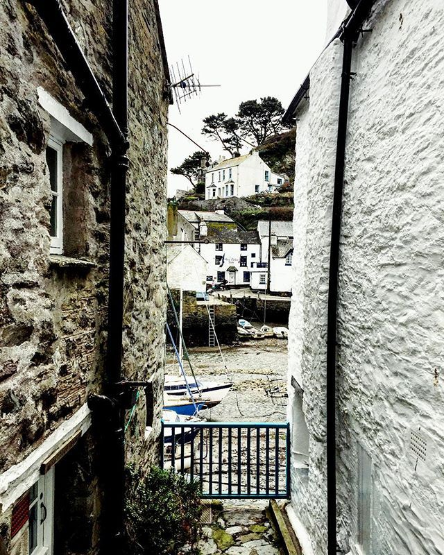 Lovely view. A snippet of Poplerro Harbour from our walk today. Survived cardiac hill...whoop! . . . . . #polperro #view #viewpoint #boats #harbour #walls #walks #cornwall #walksincornwall #freshair #cardiachill