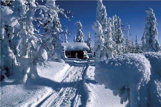 Aller au Pays du Père Noël...La Laponie...