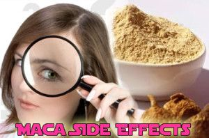 If you're presently taking maca supplements for the remedy of a minor health ailment or as a dietary complement, you should also concentrate on the doable risks and unwanted side effects associated with the herb.  More On: http://macapowderbenefits.net/maca-side-effects/