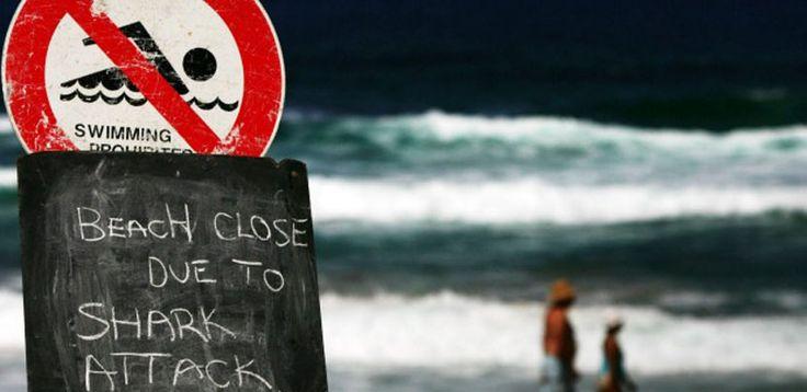 Nuevos ataques de tiburón en Australia - http://www.absolutaustralia.com/nuevos-ataques-de-tiburon-en-australia/