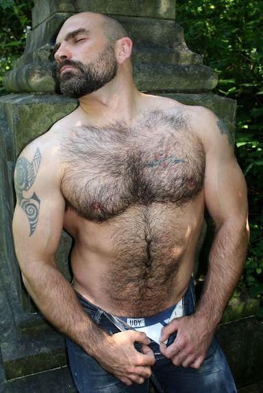from Santino gay bear md john baltimore