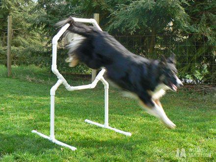 Free DIY Octagon Jumping Hoop -  make for around $20.00