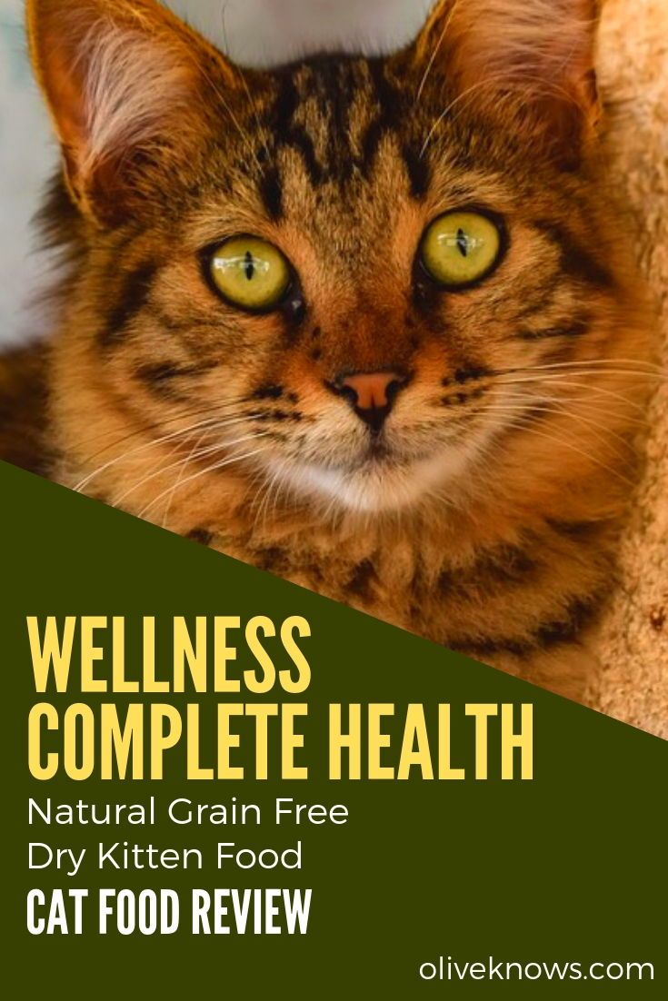 Whiskas A Complete Nutritious Cat Food In 2020 Cats Cat Food Eukanuba Dog Food