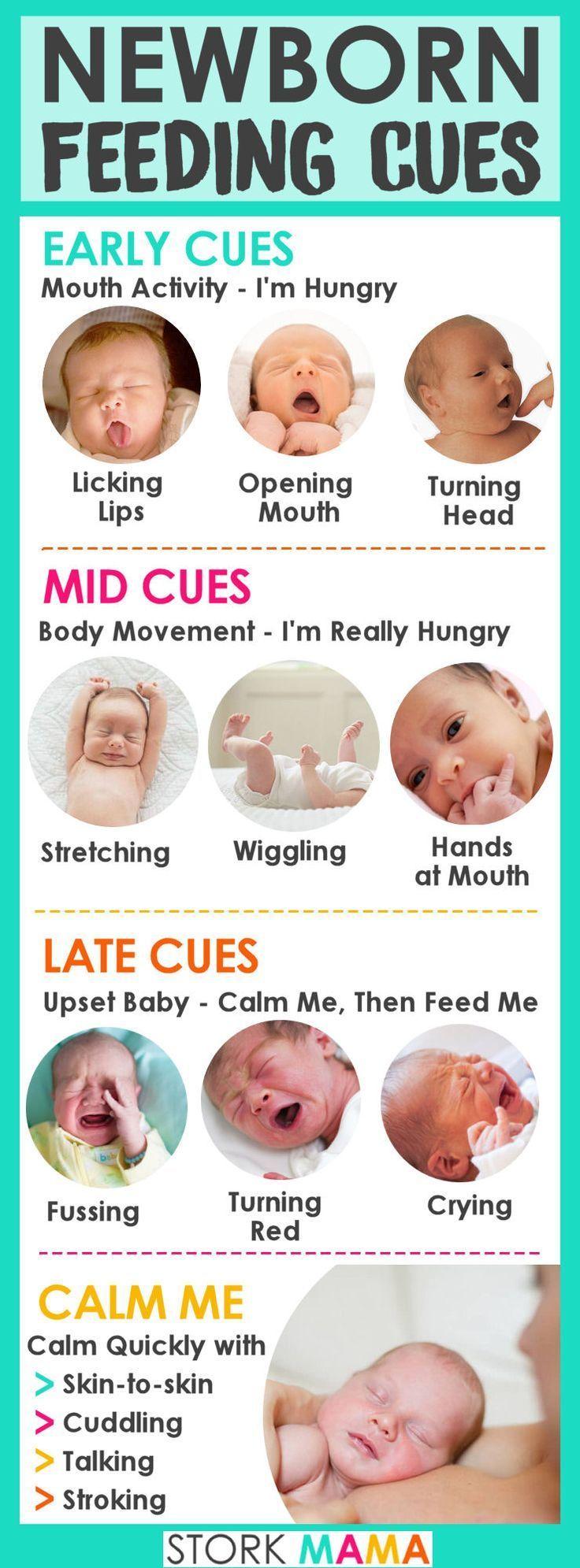 Stillen nach Bedarf   – Baby Feeding