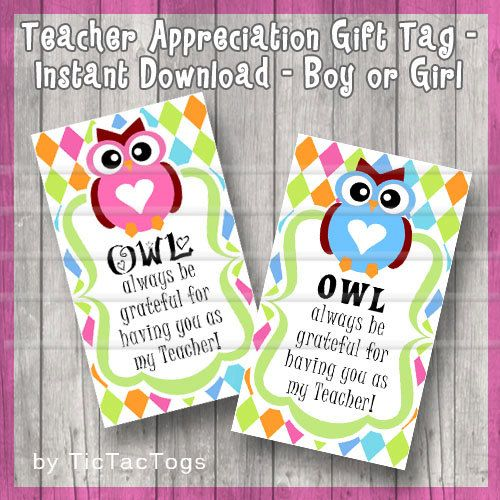 Owl Teacher Appreciation Gift Tag, Teacher Gift Tag, Teacher Printable, DIY Printable