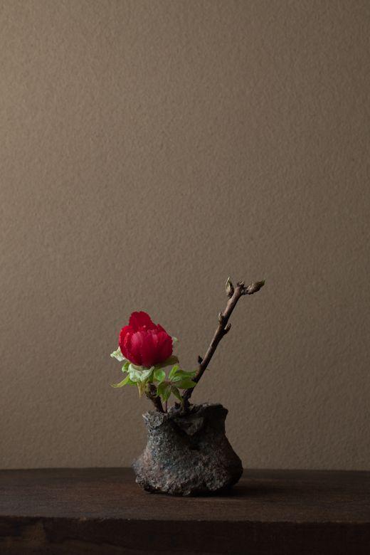 ikebana By-Toshiro Kawase