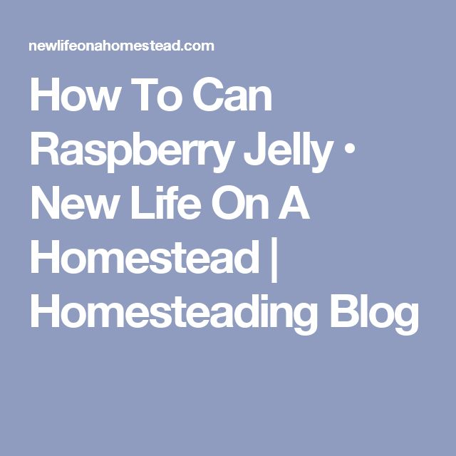 How To Can Raspberry Jelly • New Life On A Homestead | Homesteading Blog