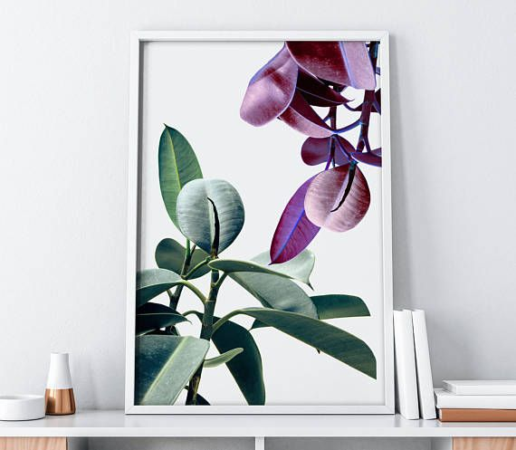 Green and pink botanical wall decor from SummerSunHomeArt.Etsy.Com || Home Decor DIY, Home Decor on a Budget, Apartment Decorating on a budget, Apartment Decorating College, Dorm Room Ideas, Dorm Room Decor, Dorm Decor, Wall Decor, Wall Art, Gallery Wall, Tumblr Room Decor DIY, Boho Chic Decor, White Aesthetic, Modern Vintage, Midcentury Modern, Interior Decorating, Scandinavian Interior, Nordic Interior, Home Office Ideas, Workspace, Desk Ideas, Bathroom, Kitchen, purple and pink