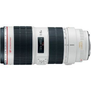 Canon EF 70-200mm f/2.8L IS II USM Telephoto Zoom Lens for Canon SLR Cameras  Canon $2,299.00