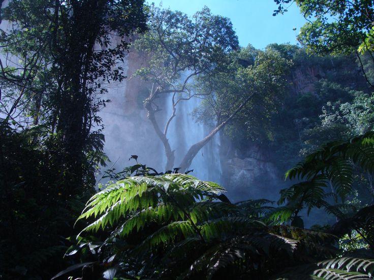 Cachoeira da Água Branca Pedro Gomes, Mato Grosso do Sul http://aquioualgumlugar.com/2014/01/16/as-atracoes-de-um-lugar-voce-e-quem-faz/