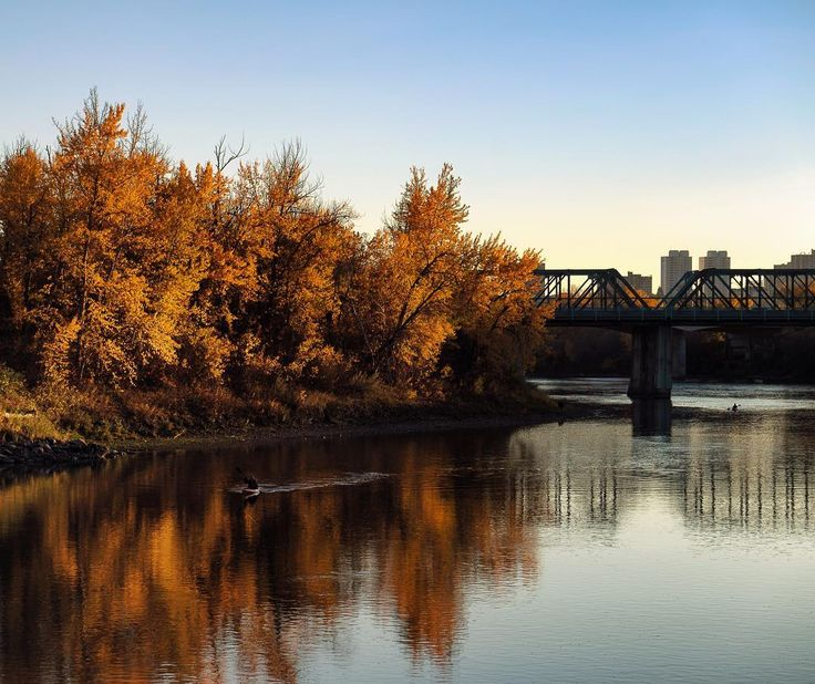 Find me on Instagram! It's might already be October but at least the views are worth falling for.  #exploreedmonton #fallcolors