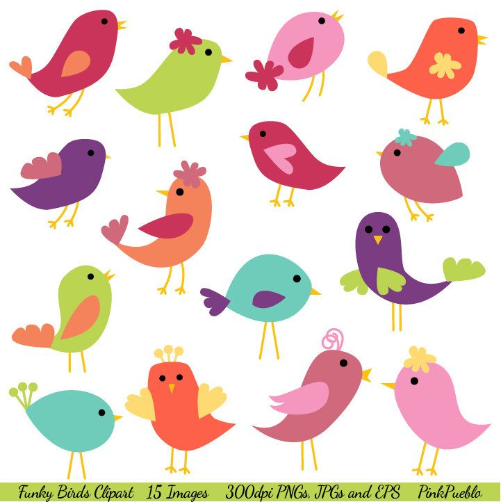 Clip Art Clipart Birds 1000 images about spring clipart on pinterest cute birds clip to buy funky vectors and our set comes with 1 illustrator eps file 15 png files transpa