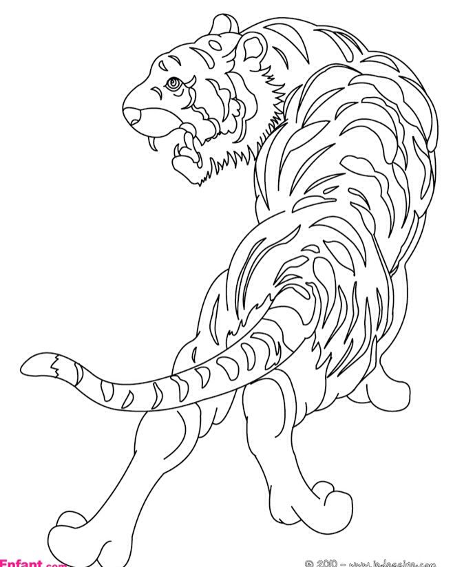 45 best Coloriage art thérapie images on Pinterest Art therapy - best of catfish coloring page