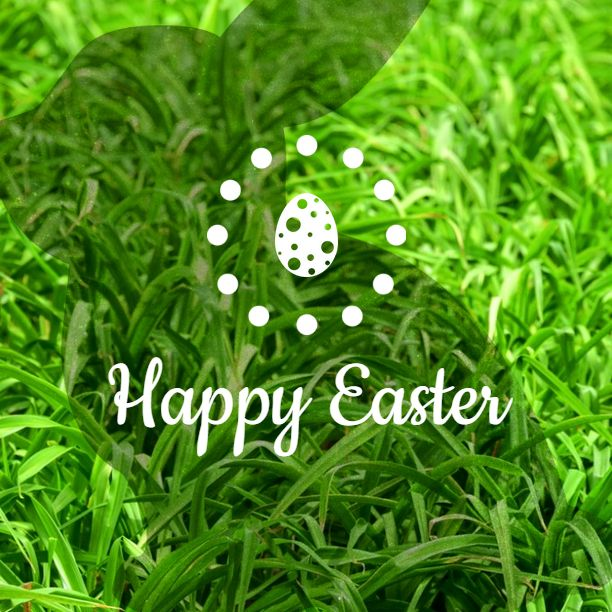 Fully editable Easter Createer greeting card #Easter card #hare #easter #egg #event #holiday #sweet #celebrate #rabbit #greeting card