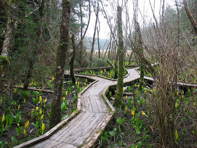Walkway in Coos Bay, Oregon...camped on the beach here. Heard fog horns in the night. Cool.