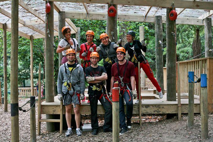 Trees Adventure - Glen Harrow Park