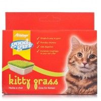 Good Girl Kitty Grass (Cats) - includes sameday send, FREE 1st Class Delivery plus 28 day peace of mind Returns Policy on all discount #Pet Supplies ( #Cat #Dog #Fish Items) at http://cutpricepetproducts.co.uk