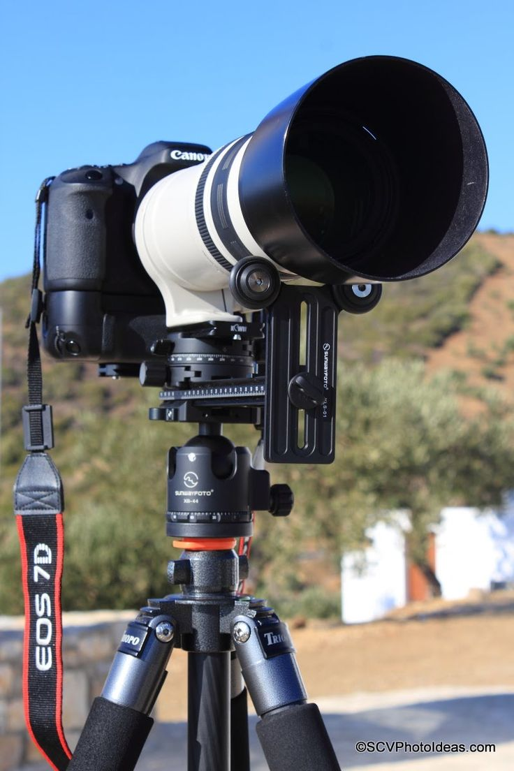 A thorough and detailed review of the Sunwayfoto YLS-01 Y-Type Long Lens Support with implementation examples. #sunwayfoto   #yoke   #longlens   #telephoto   #support   #bracket   #review