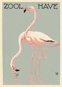 Zoo Plakat m. flamingo