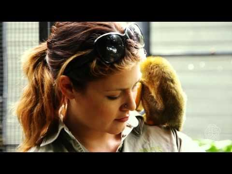 This video is all about becoming a zoologist! Their job is to provide healthy environment for animals. One of their main jobs is to conserve wildlife.
