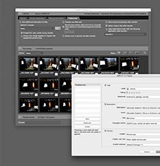 Archiwizacja zdjęć, część 2– jak utrzymać porządek, czyli katalogowanie