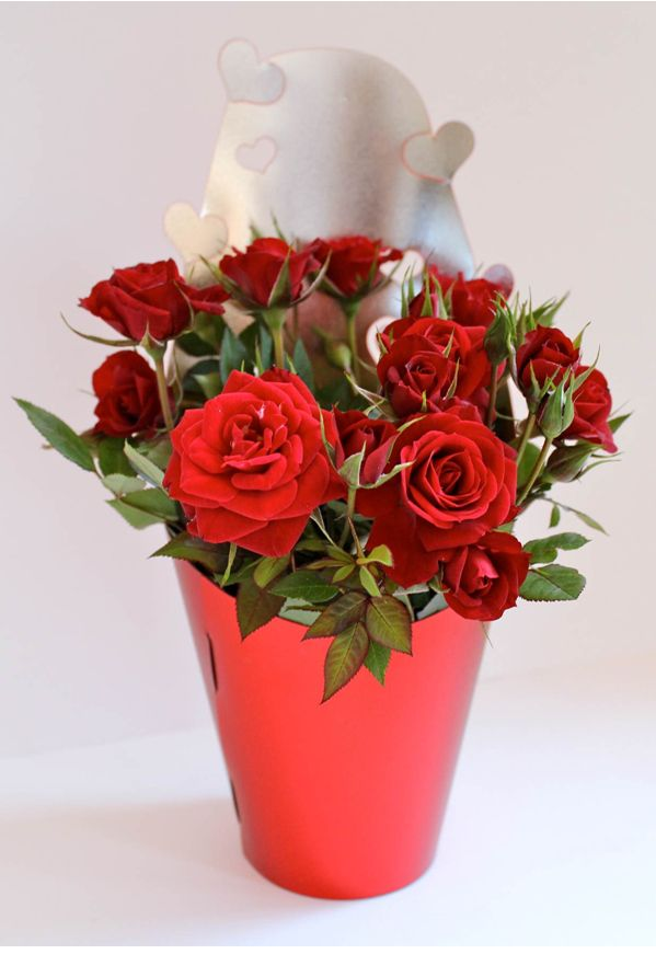 'First Kiss' Living Red Rose Bouquet