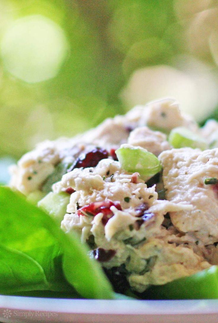 This chicken salad is GREAT with sweetened dried cranberries, celery, mayonnaise and tarragon. Just like Starbuck's. Perfect for a sandwich or salad. On SimplyRecipes.com