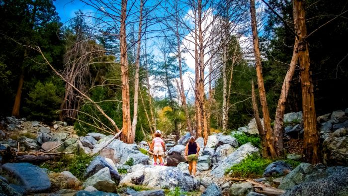 Travel | California | Attractions | Things To Do | Adventure| Hidden Gems | Hiking