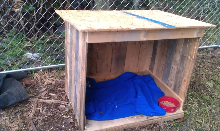 Goat house made out of free recycled pallets. Green