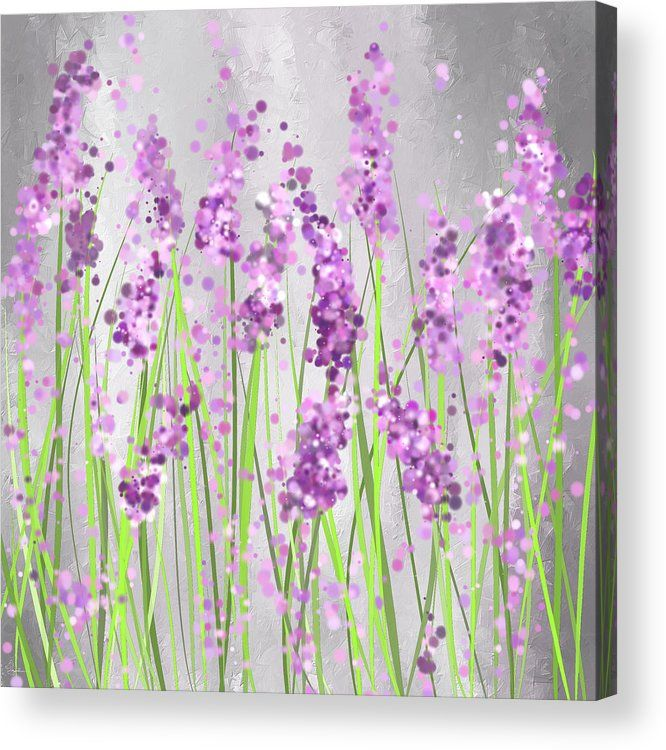 Lavender Blossoms Lavender Field Painting Acrylic Print By