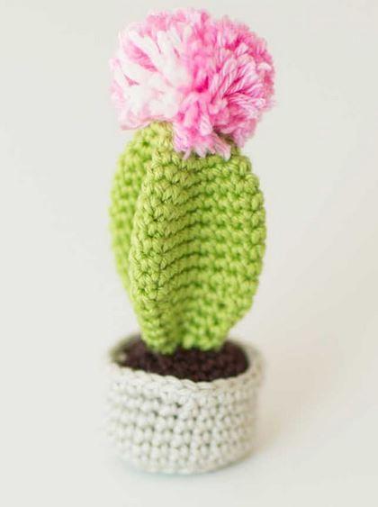 Gehäkelter Kaktus Kostenlose Anleitung Diy Stricken Häkeln Alles