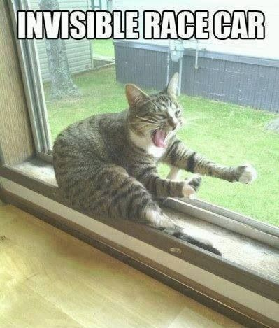 Invisible Racecar