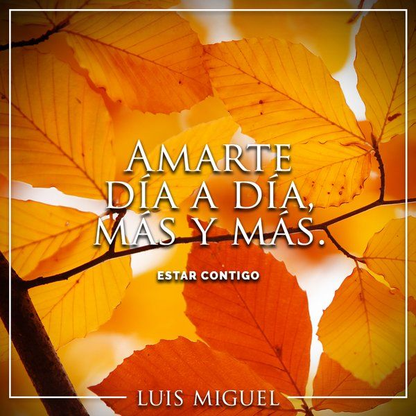 Luis Miguel (@LMXLM) | Twitter